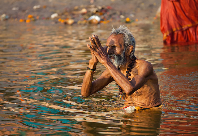 Cleaning the Ganga: Let's not forget invasive species