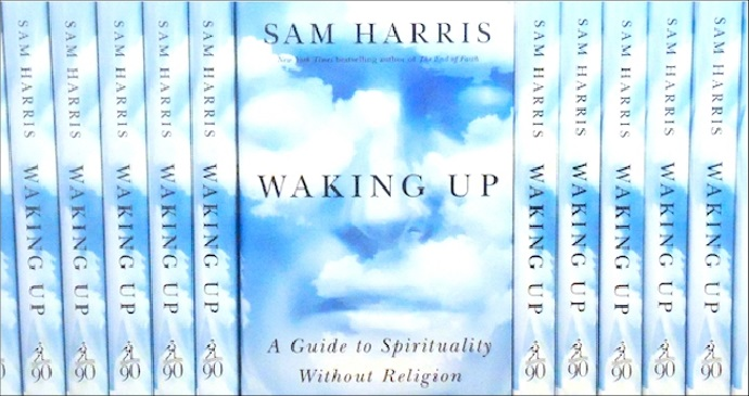Sam Harris – Waking Up: A Guide to Spirituality without Religion A Critique