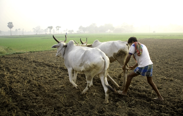 Ancient Indian Tradition of Agriculture and Food Sharing