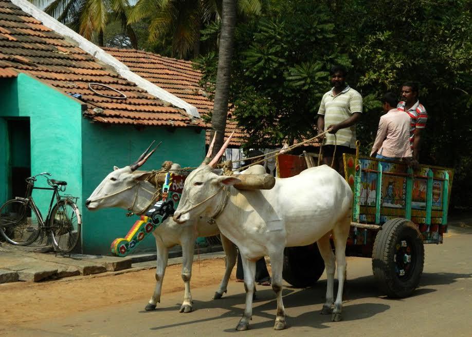 Prana, desha, anna: the modes of spiritual agriculture-II