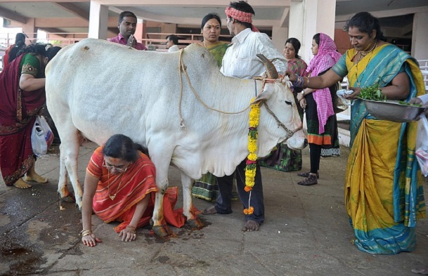 A Case for Cow-Protection without Whitewashing the Past