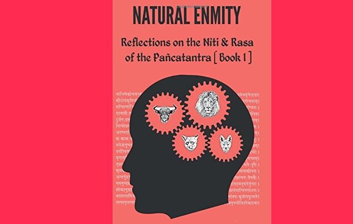 Book Review: Natural Enmity, by Ashay Naik