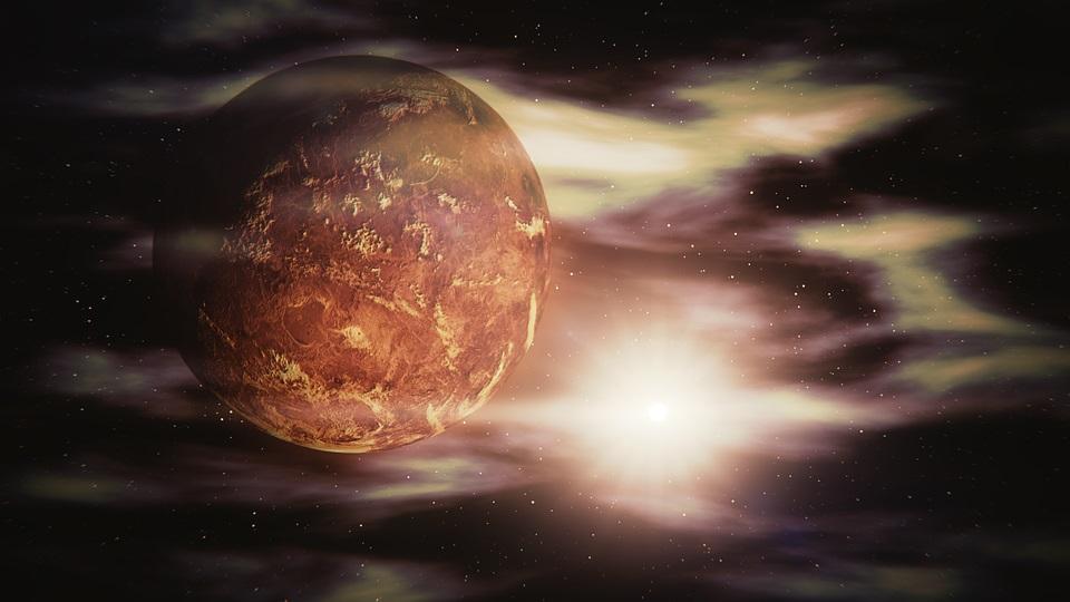 Vena, Veda, Venus