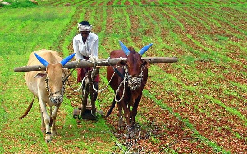 हिन्दू सभ्यता का एक महत्वपूर्ण अंग-कृषि
