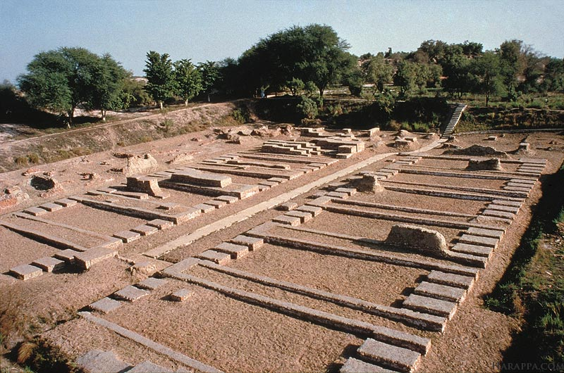 Harappan Site: A Miniature Depiction in Seals