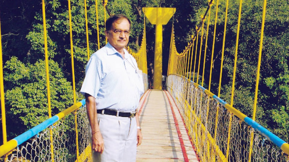 Foot bridges as keys to some village futures