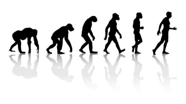 Evolution, Religion, and Indian Traditions-whose Clash Is It Anyway?